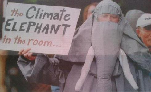 The Climate Elephant goes where climate change is being ignored